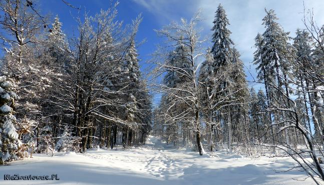 szczyrk_zima